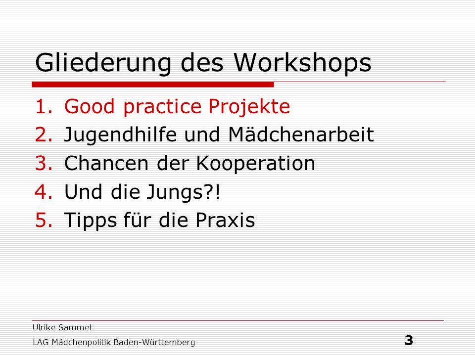 Ulrike Sammet LAG Mädchenpolitik Baden-Württemberg 3 Gliederung des Workshops 1.Good practice Projekte 2.Jugendhilfe und Mädchenarbeit 3.Chancen der K