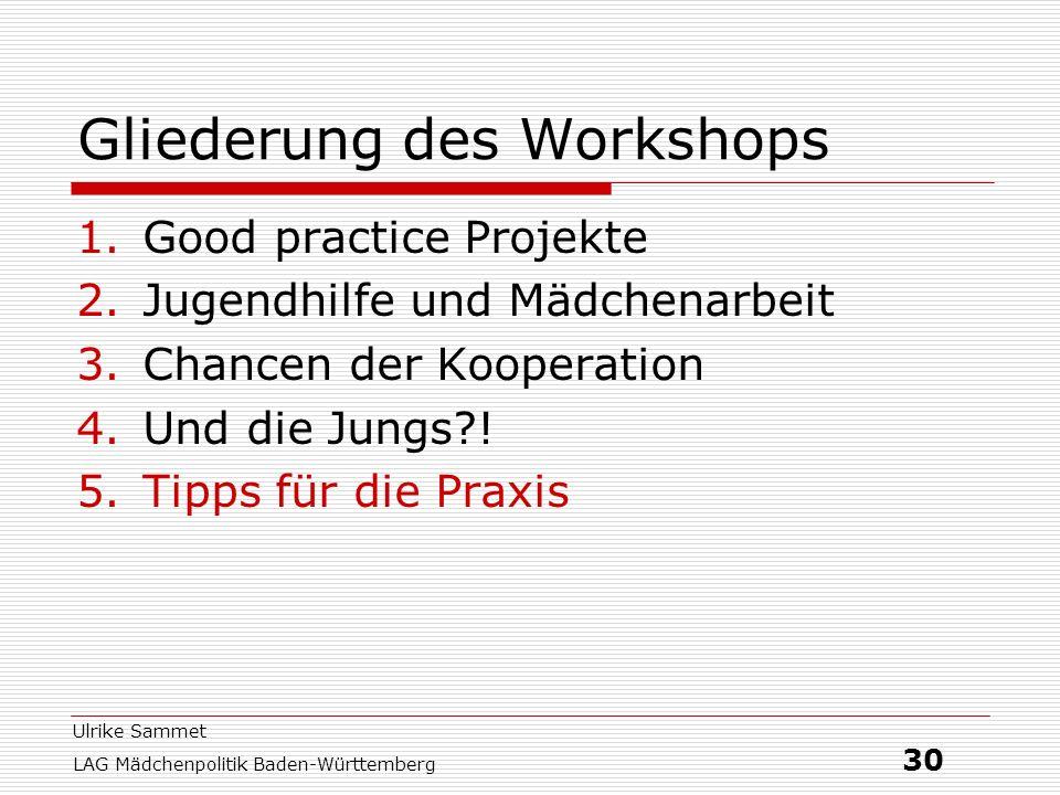 Ulrike Sammet LAG Mädchenpolitik Baden-Württemberg 30 Gliederung des Workshops 1.Good practice Projekte 2.Jugendhilfe und Mädchenarbeit 3.Chancen der