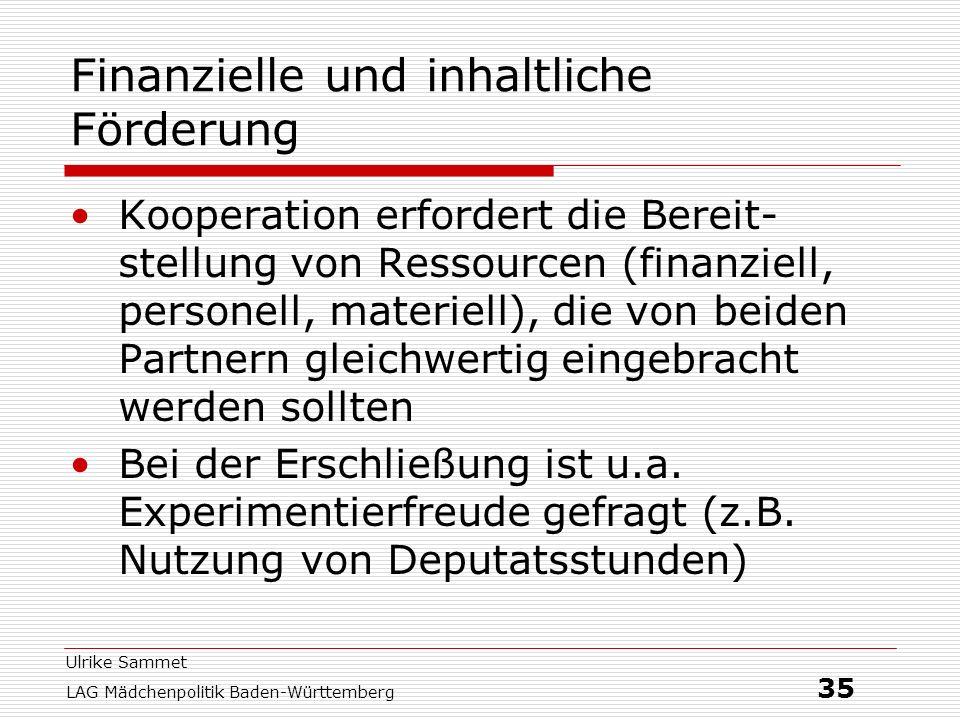 Ulrike Sammet LAG Mädchenpolitik Baden-Württemberg 35 Finanzielle und inhaltliche Förderung Kooperation erfordert die Bereit- stellung von Ressourcen