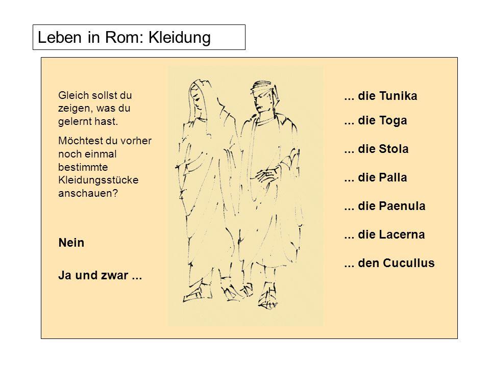 Leben in Rom: Kleidung Gleich sollst du zeigen, was du gelernt hast. Möchtest du vorher noch einmal bestimmte Kleidungsstücke anschauen? Nein Ja und z