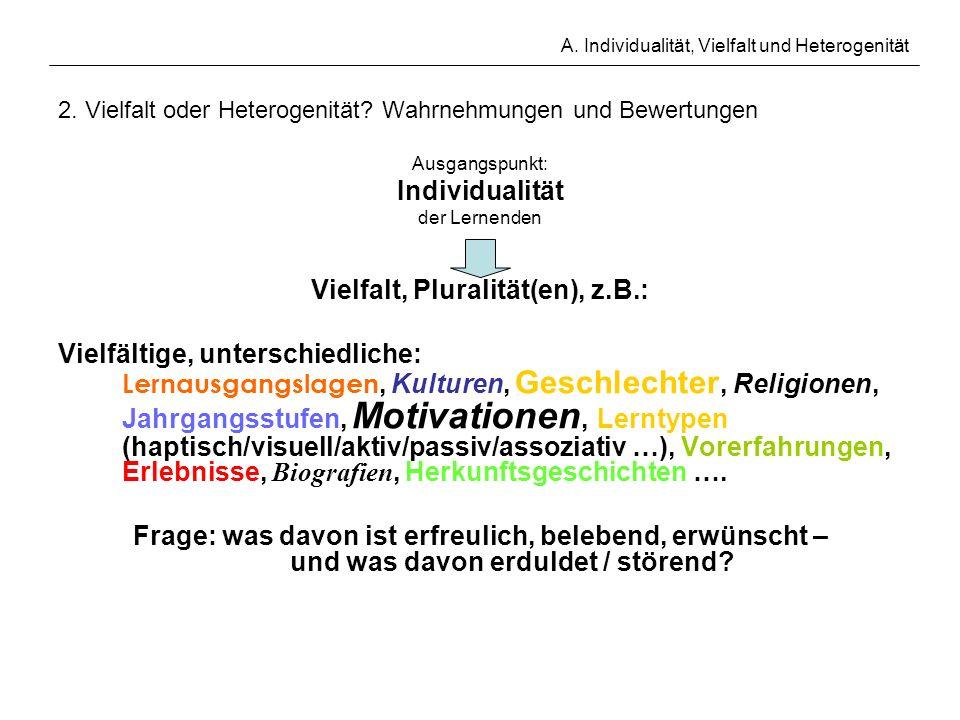 A. Individualität, Vielfalt und Heterogenität 2. Vielfalt oder Heterogenität? Wahrnehmungen und Bewertungen Ausgangspunkt: Individualität der Lernende