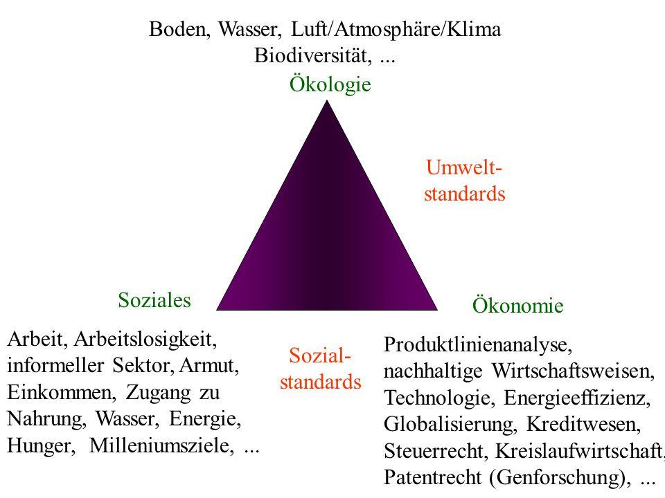 Ökologie Soziales Ökonomie Arbeit, Arbeitslosigkeit, informeller Sektor, Armut, Einkommen, Zugang zu Nahrung, Wasser, Energie, Hunger, Milleniumsziele