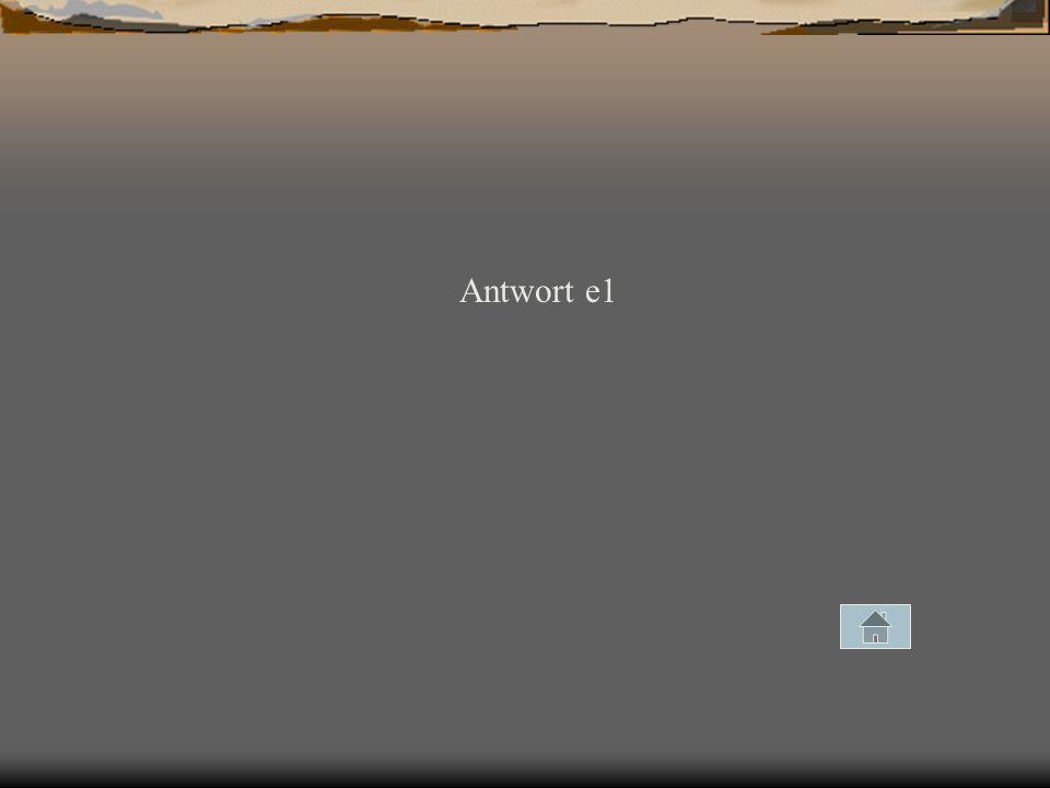 Antwort e1