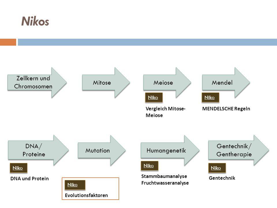 Mendel Meiose Mitose Humangenetik Mutation Gentechnik/ Gentherapie Vergleich Mitose- Meiose Niko Nikos DNA/ Proteine Zellkern und Chromosomen DNA und Protein Stammbaumanalyse Fruchtwasseranalyse Gentechnik MENDELSCHE Regeln Niko Evolutionsfaktoren