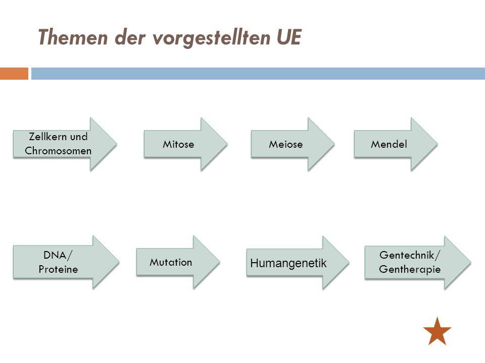 Mendel Meiose Mitose Mutation Gentechnik/ Gentherapie Themen der vorgestellten UE DNA/ Proteine Zellkern und Chromosomen Humangenetik