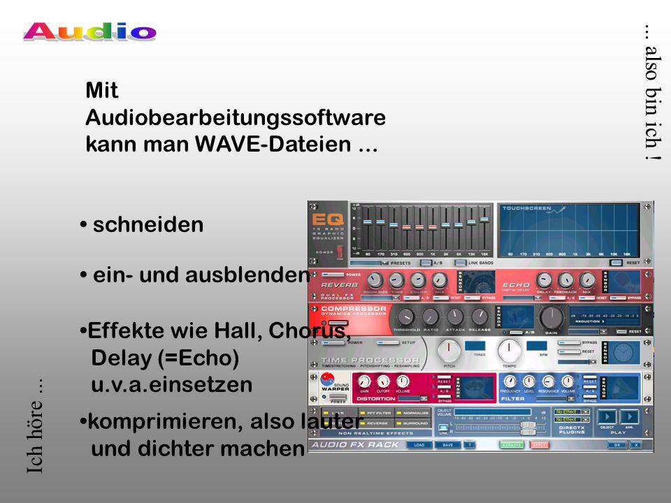 Ich höre......also bin ich . Mit Audiobearbeitungssoftware kann man WAVE-Dateien...