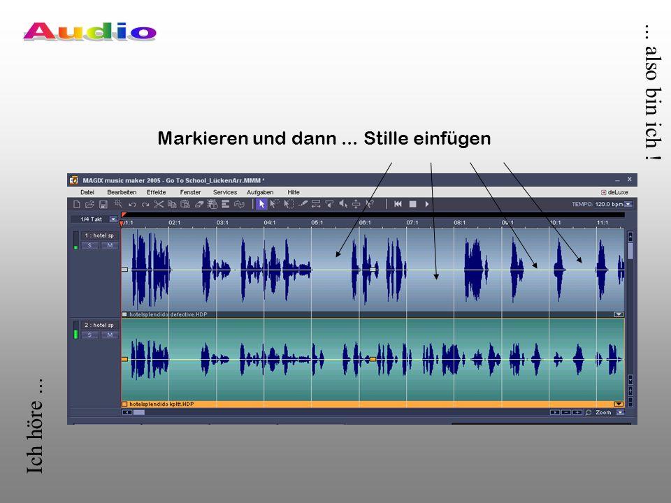 Ich höre...... also bin ich . Mit Audiobearbeitungssoftware kann man WAVE-Dateien...