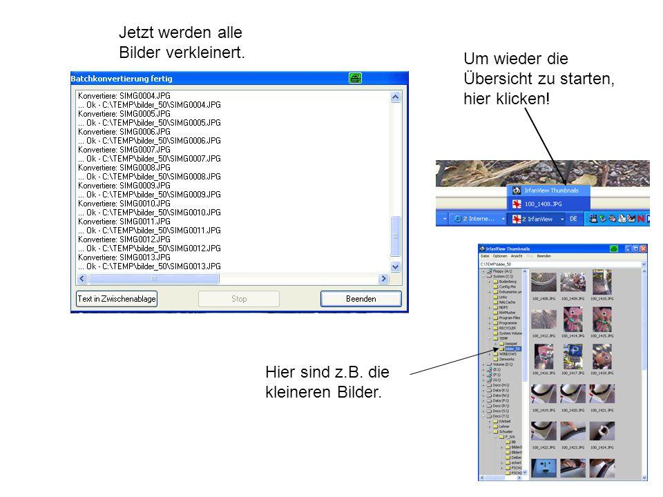 14 Jetzt werden alle Bilder verkleinert. Um wieder die Übersicht zu starten, hier klicken! Hier sind z.B. die kleineren Bilder.