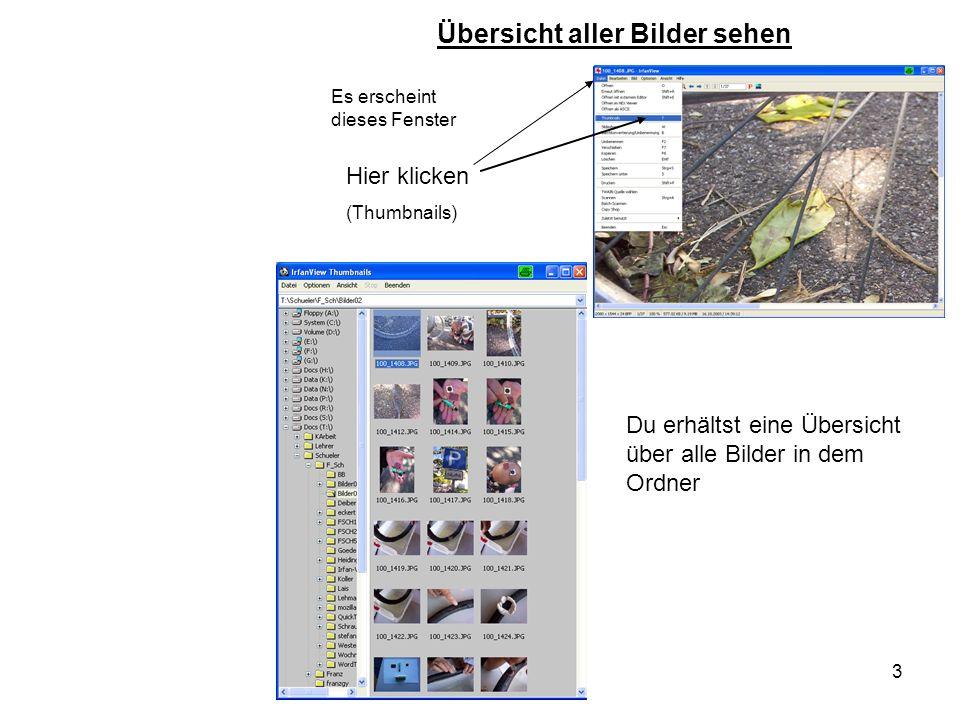 3 Es erscheint dieses Fenster Übersicht aller Bilder sehen Hier klicken (Thumbnails) Du erhältst eine Übersicht über alle Bilder in dem Ordner
