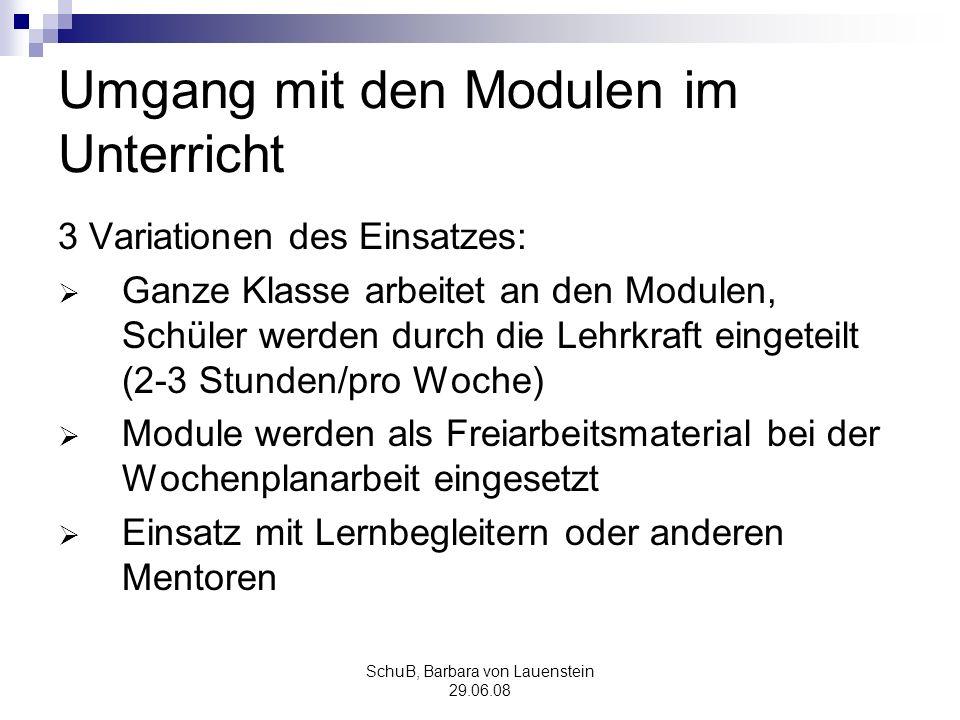 SchuB, Barbara von Lauenstein 29.06.08 Umgang mit den Modulen im Unterricht 3 Variationen des Einsatzes: Ganze Klasse arbeitet an den Modulen, Schüler