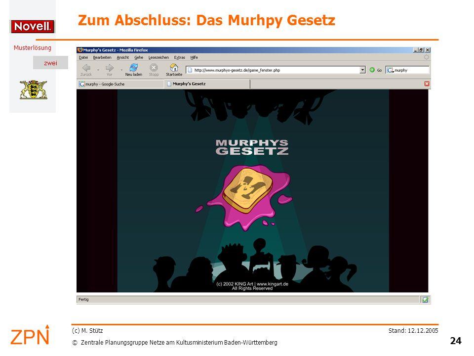 © Zentrale Planungsgruppe Netze am Kultusministerium Baden-Württemberg Musterlösung Stand: 12.12.2005 24 (c) M.