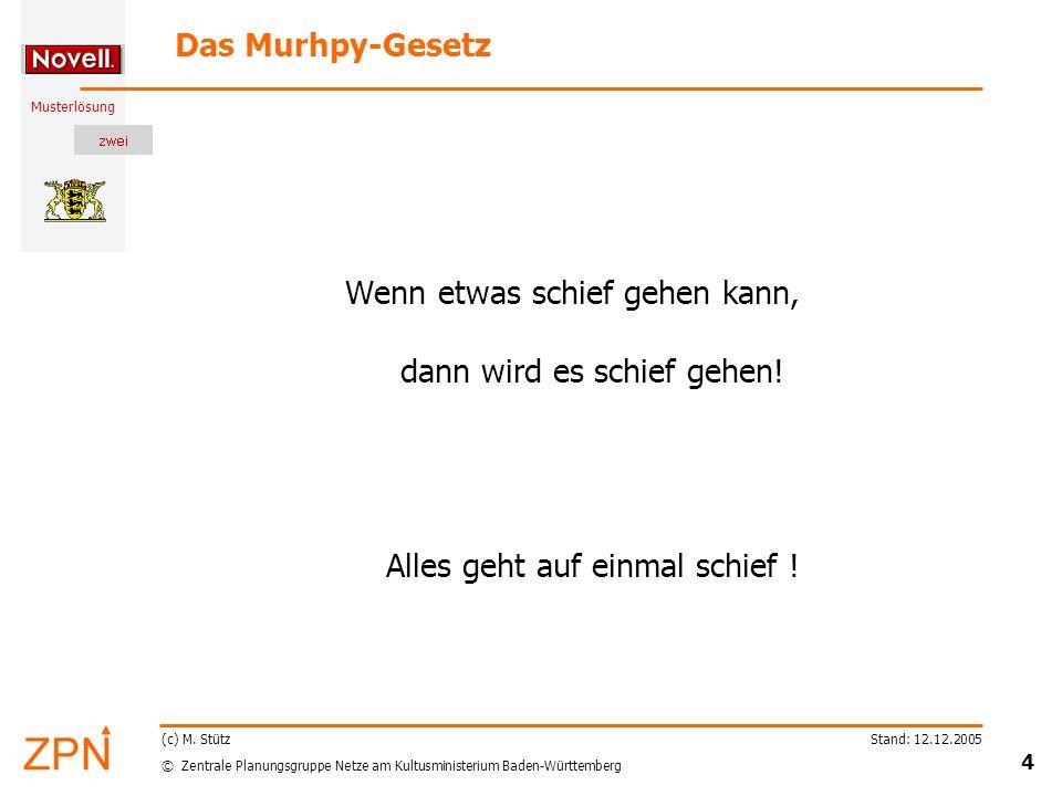 © Zentrale Planungsgruppe Netze am Kultusministerium Baden-Württemberg Musterlösung Stand: 12.12.2005 4 (c) M.