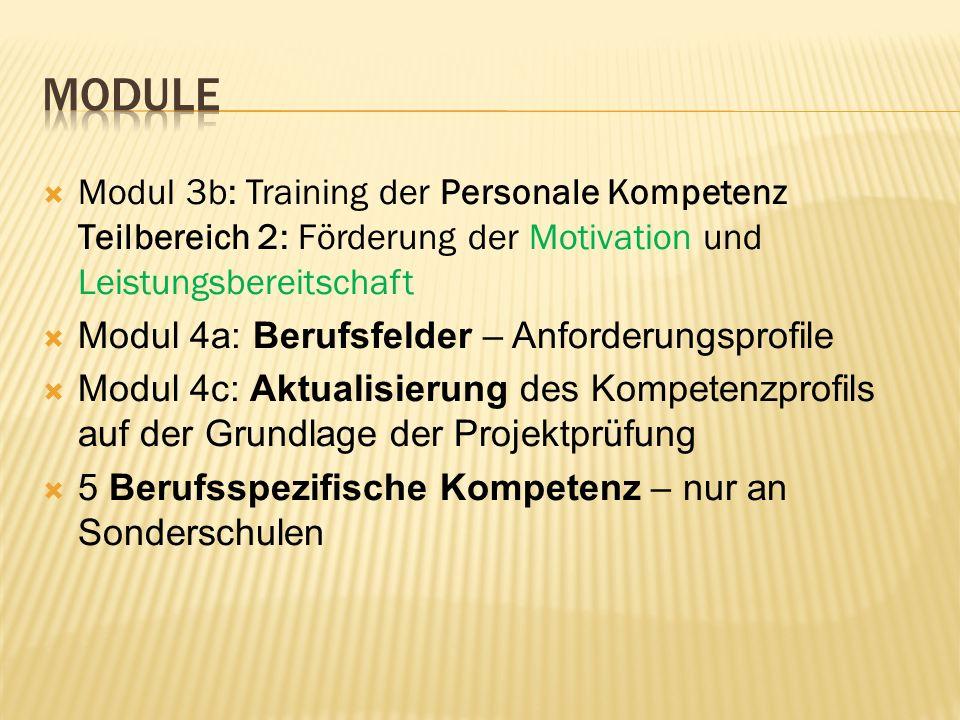 Modul 3b: Training der Personale Kompetenz Teilbereich 2: Förderung der Motivation und Leistungsbereitschaft Modul 4a: Berufsfelder – Anforderungsprof