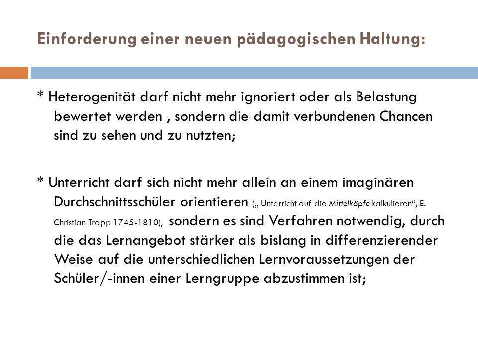 Exemplifizierung am Beispiel des pädagogischen Umgangs mit migrationsbedingter Heterogenität!.