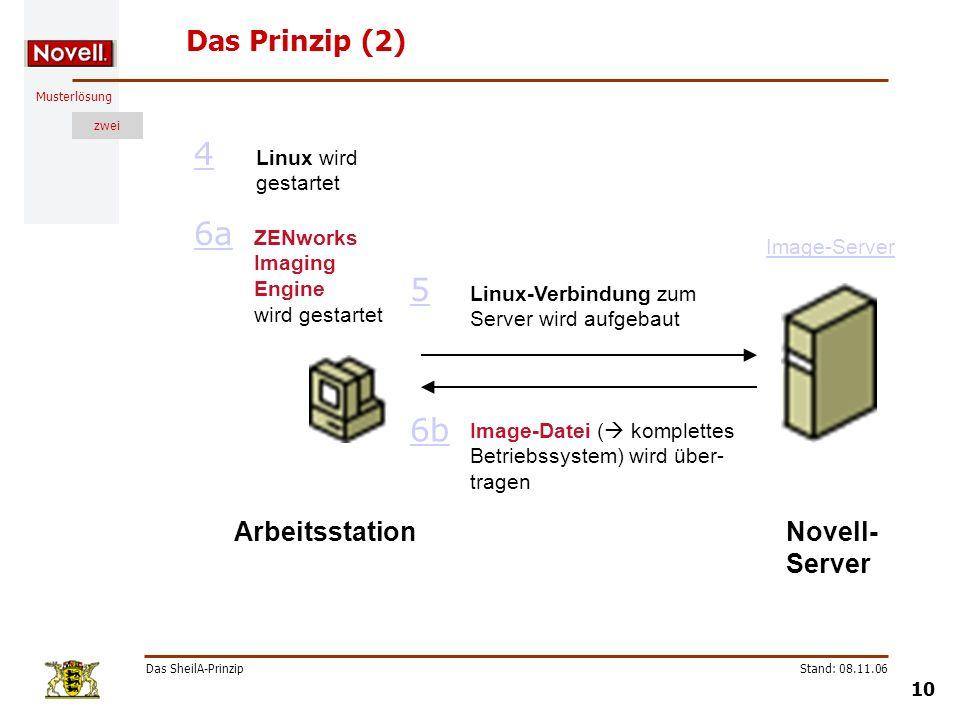Musterlösung zwei Das SheilA-Prinzip 10 Stand: 08.11.06 Das Prinzip (2) Linux-Verbindung zum Server wird aufgebaut 5 Image-Datei ( komplettes Betriebs