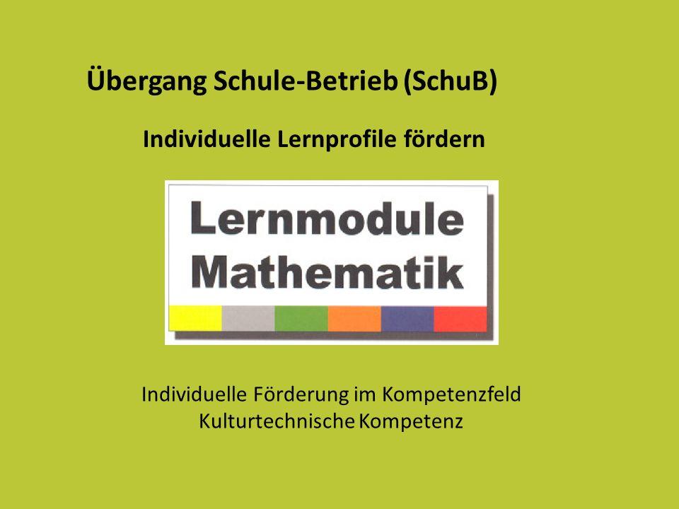 Übergang Schule-Betrieb (SchuB) Individuelle Förderung im Kompetenzfeld Kulturtechnische Kompetenz Individuelle Lernprofile fördern