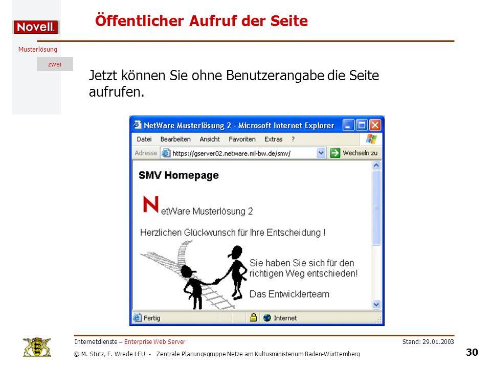 © M. Stütz, F. Wrede LEU - Zentrale Planungsgruppe Netze am Kultusministerium Baden-Württemberg Musterlösung zwei Stand: 29.01.2003 30 Internetdienste
