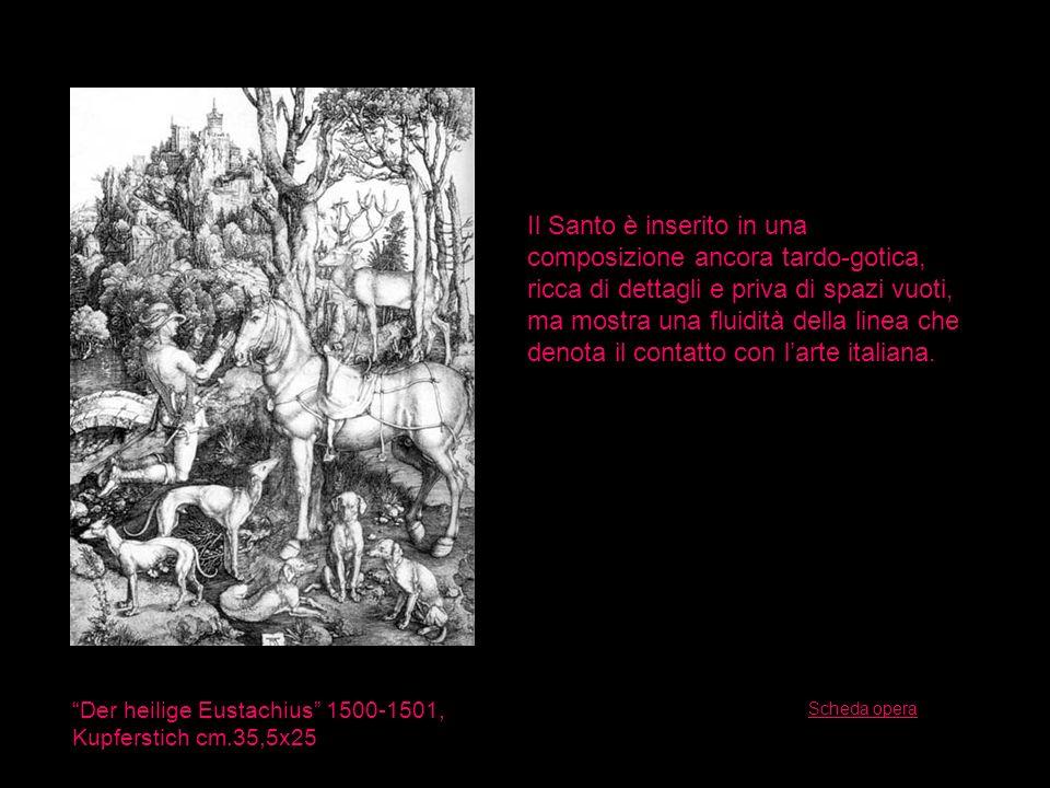 Der heilige Eustachius 1500-1501, Kupferstich cm.35,5x25 Il Santo è inserito in una composizione ancora tardo-gotica, ricca di dettagli e priva di spa