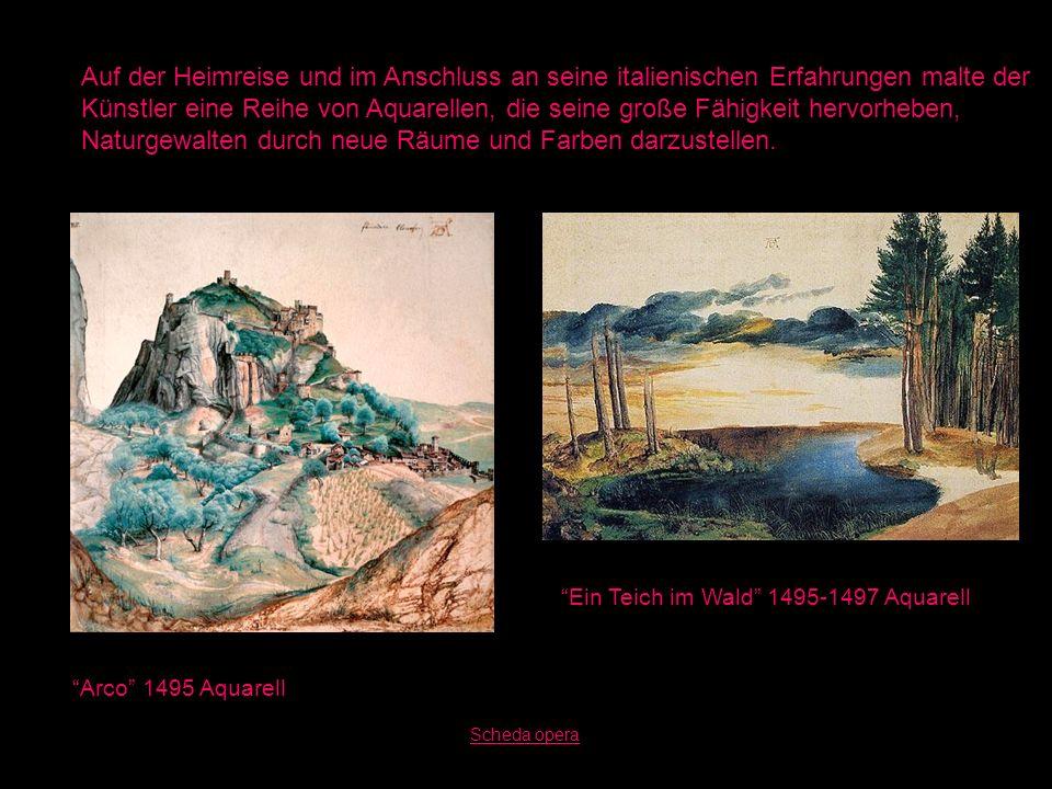 Arco 1495 Aquarell Ein Teich im Wald 1495-1497 Aquarell Auf der Heimreise und im Anschluss an seine italienischen Erfahrungen malte der Künstler eine