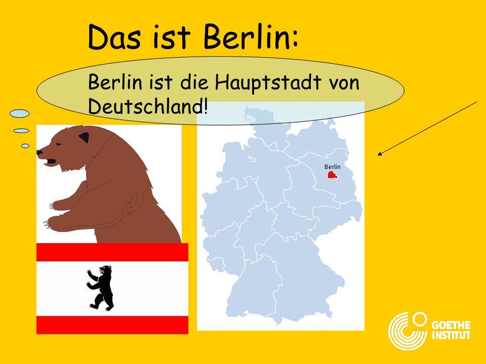 Das ist Knut: Ich bin ein Berliner Bär!