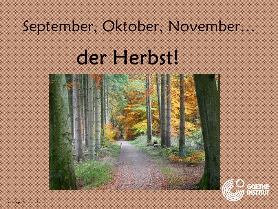 September, Oktober, November… der Herbst! all images ©www.colourbox.com