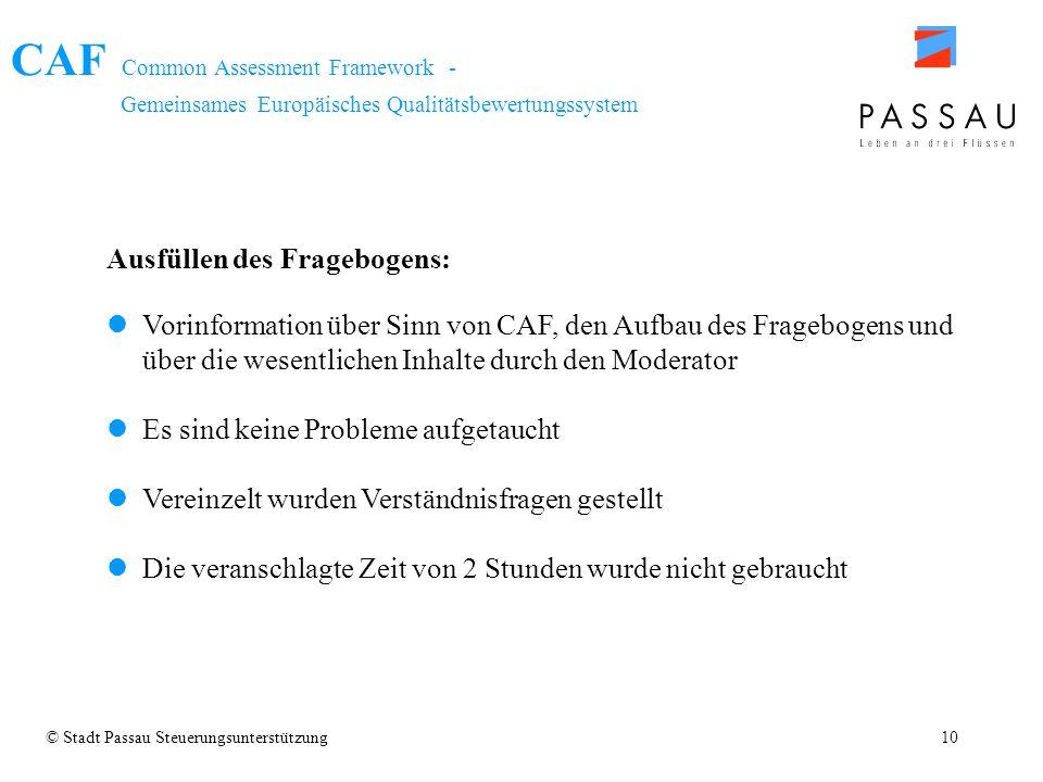 CAF Common Assessment Framework - Gemeinsames Europäisches Qualitätsbewertungssystem © Stadt Passau Steuerungsunterstützung10 Ausfüllen des Fragebogen