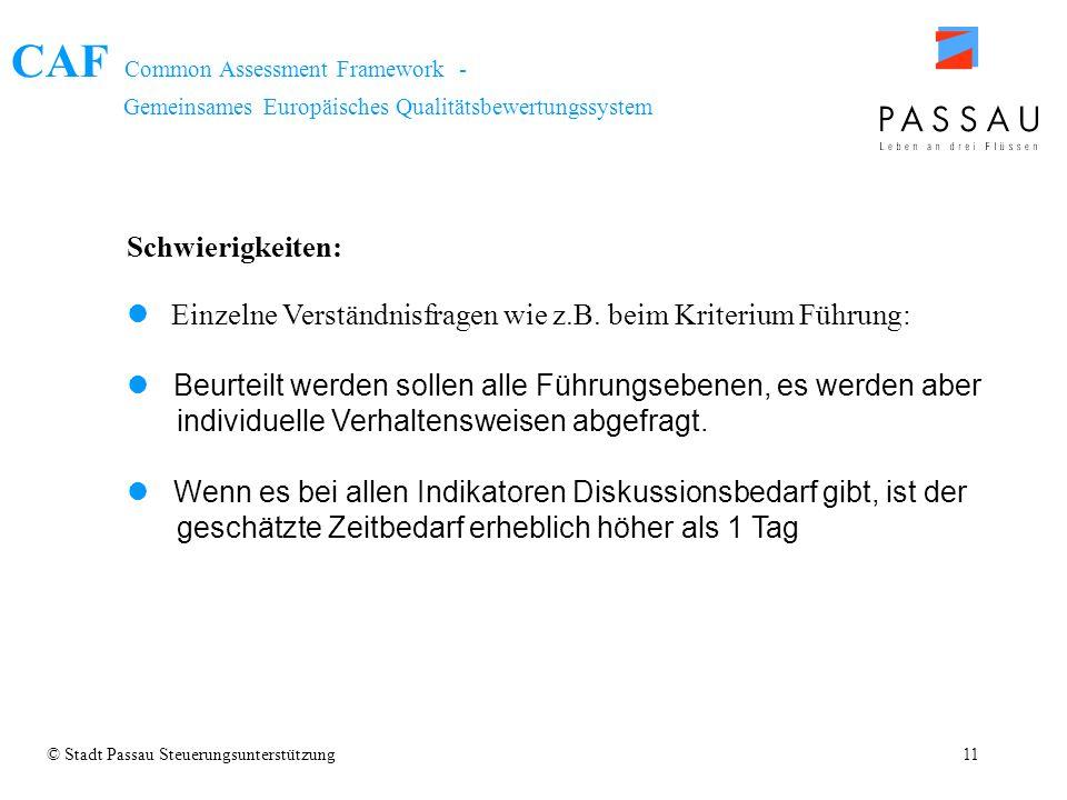 CAF Common Assessment Framework - Gemeinsames Europäisches Qualitätsbewertungssystem © Stadt Passau Steuerungsunterstützung11 Schwierigkeiten: Einzeln