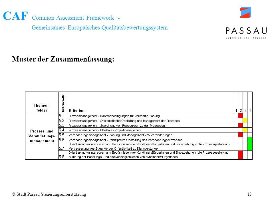 CAF Common Assessment Framework - Gemeinsames Europäisches Qualitätsbewertungssystem © Stadt Passau Steuerungsunterstützung13 Muster der Zusammenfassu
