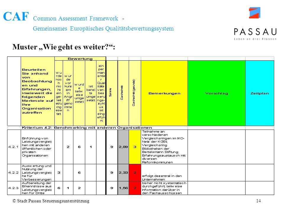 CAF Common Assessment Framework - Gemeinsames Europäisches Qualitätsbewertungssystem © Stadt Passau Steuerungsunterstützung14 Muster Wie geht es weite