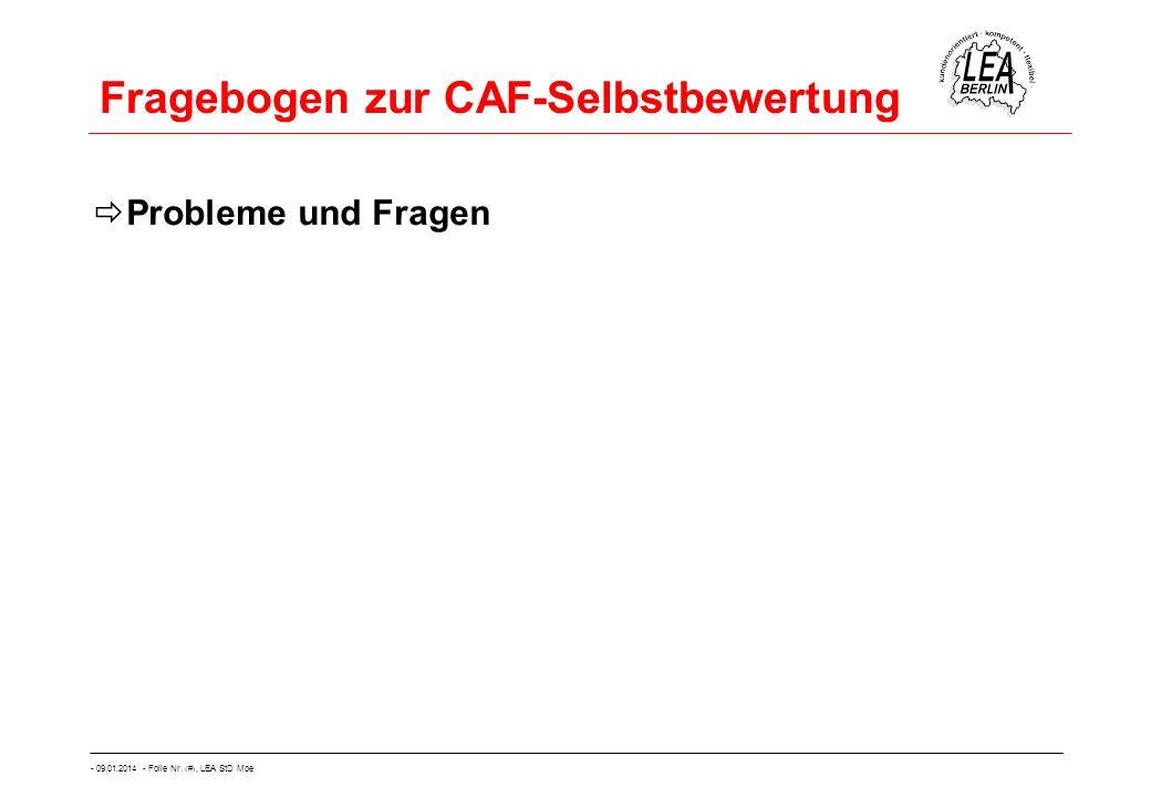 - 09.01.2014 - Folie Nr. 22, LEA StD Moe Fragebogen zur CAF-Selbstbewertung Probleme und Fragen