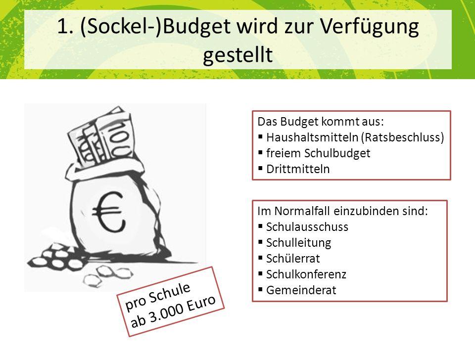 1. (Sockel-)Budget wird zur Verfügung gestellt Das Budget kommt aus: Haushaltsmitteln (Ratsbeschluss) freiem Schulbudget Drittmitteln Im Normalfall ei
