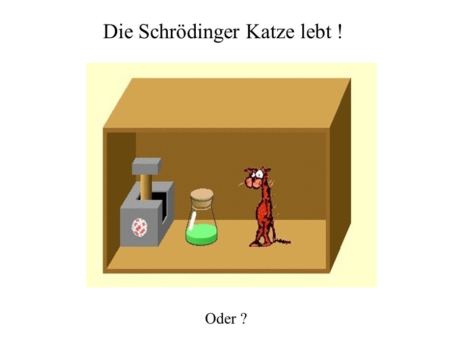 Die Schrödinger Katze lebt ! Oder ?