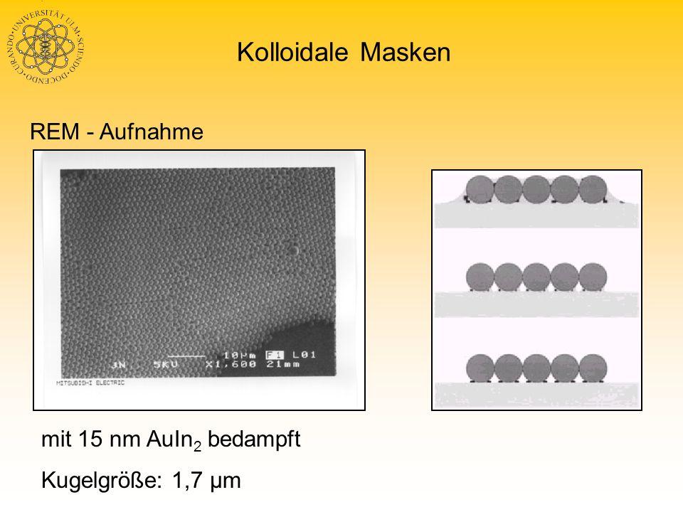 Geordnete Nanostrukturen Ablösen der Kugeln mit Chloroform oder Tesafilm Ringe aus Surfactants Scanbereich 2 2 µm², (Tapping) AFM-Aufnahme