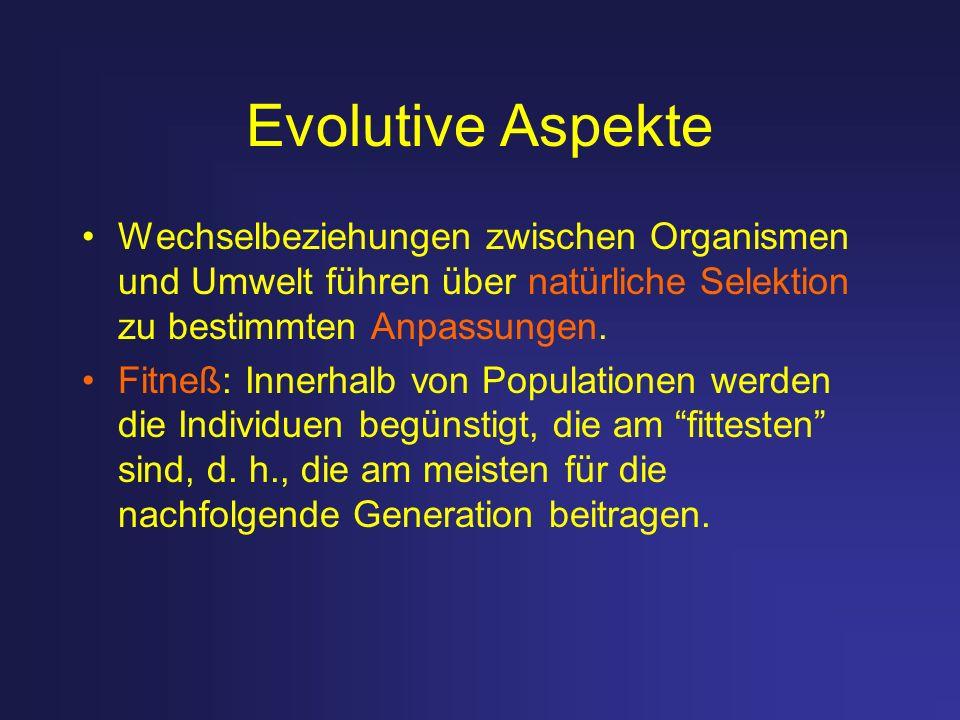 Evolutive Aspekte Wechselbeziehungen zwischen Organismen und Umwelt führen über natürliche Selektion zu bestimmten Anpassungen. Fitneß: Innerhalb von