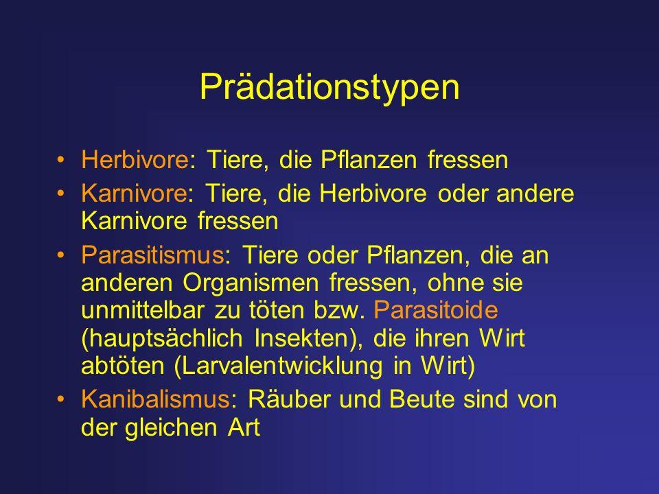 Prädationstypen Herbivore: Tiere, die Pflanzen fressen Karnivore: Tiere, die Herbivore oder andere Karnivore fressen Parasitismus: Tiere oder Pflanzen