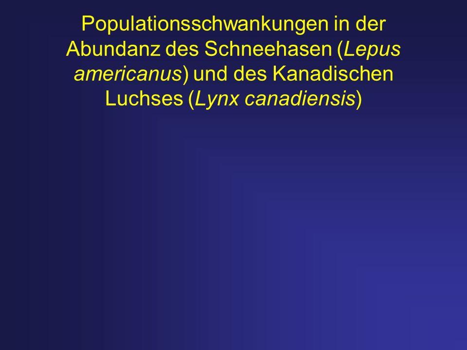 Populationsschwankungen in der Abundanz des Schneehasen (Lepus americanus) und des Kanadischen Luchses (Lynx canadiensis)