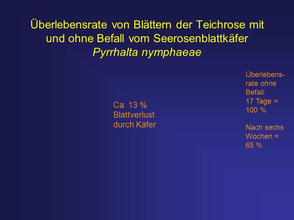 Überlebensrate von Blättern der Teichrose mit und ohne Befall vom Seerosenblattkäfer Pyrrhalta nymphaeae Überlebens- rate ohne Befall: 17 Tage = 100 %
