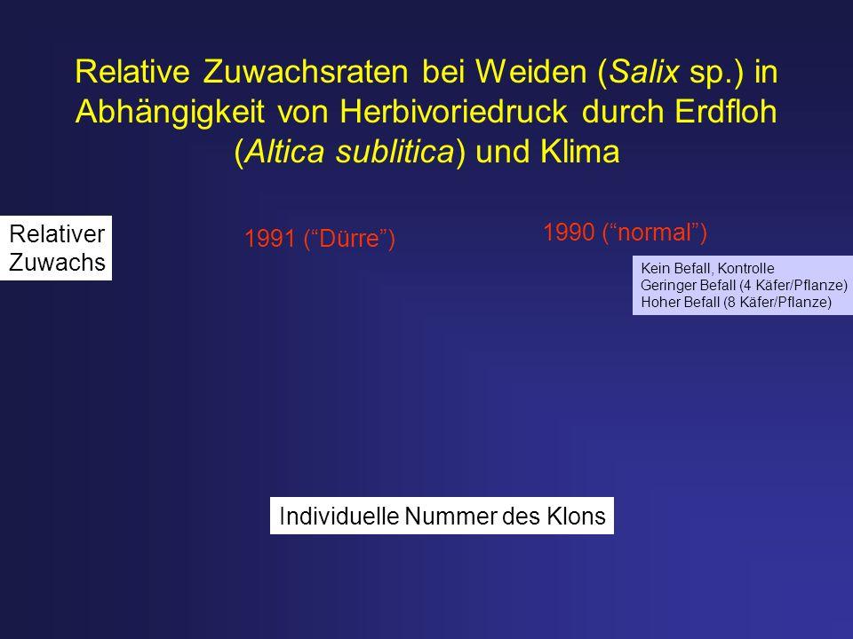 Relative Zuwachsraten bei Weiden (Salix sp.) in Abhängigkeit von Herbivoriedruck durch Erdfloh (Altica sublitica) und Klima 1991 (Dürre) 1990 (normal)