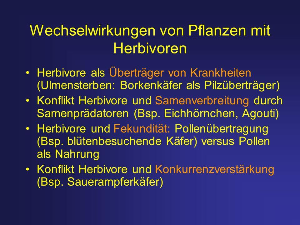 Wechselwirkungen von Pflanzen mit Herbivoren Herbivore als Überträger von Krankheiten (Ulmensterben: Borkenkäfer als Pilzüberträger) Konflikt Herbivor