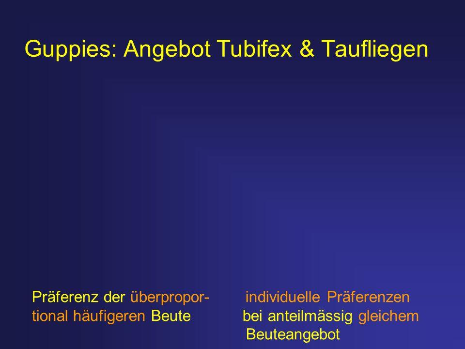 Guppies: Angebot Tubifex & Taufliegen Präferenz der überpropor- individuelle Präferenzen tional häufigeren Beute bei anteilmässig gleichem Beuteangebo