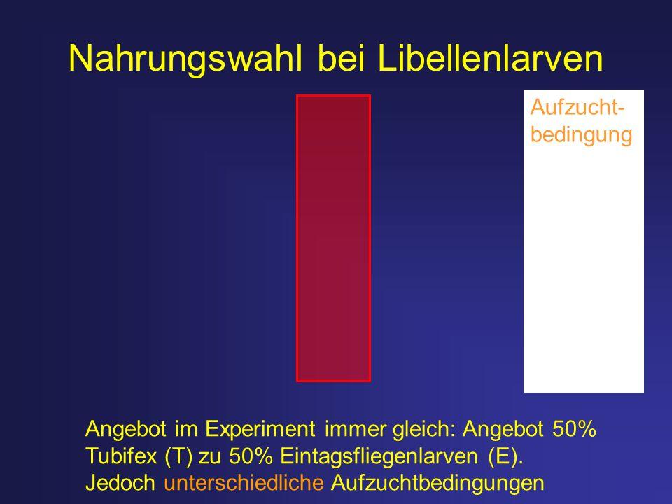 Nahrungswahl bei Libellenlarven Angebot im Experiment immer gleich: Angebot 50% Tubifex (T) zu 50% Eintagsfliegenlarven (E). Jedoch unterschiedliche A