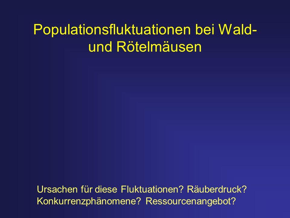 Populationsfluktuationen bei Wald- und Rötelmäusen Ursachen für diese Fluktuationen? Räuberdruck? Konkurrenzphänomene? Ressourcenangebot?