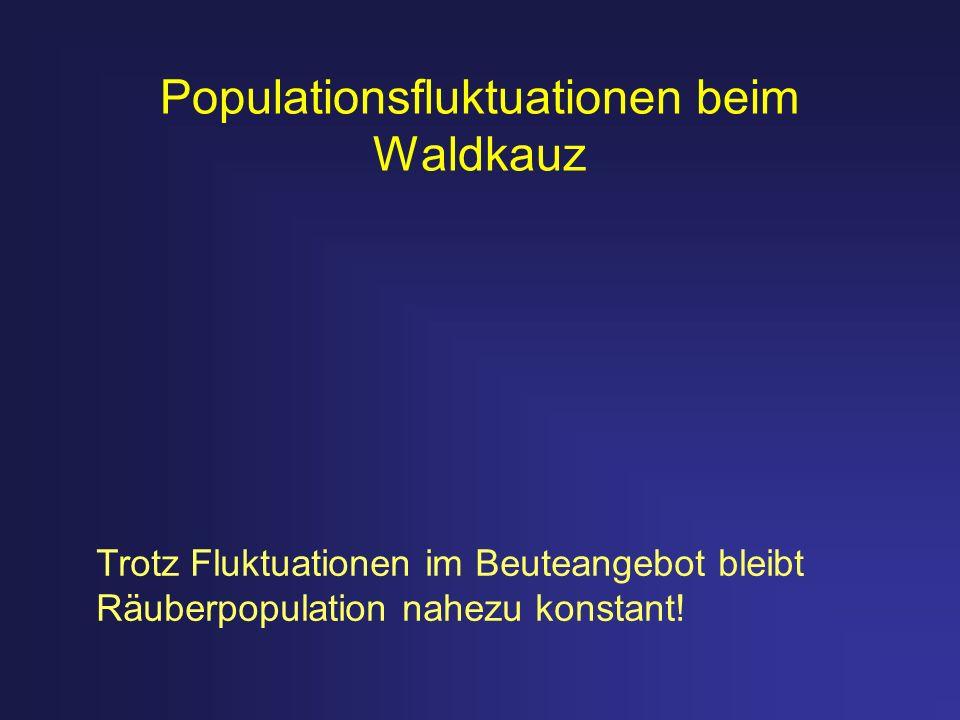 Populationsfluktuationen beim Waldkauz Trotz Fluktuationen im Beuteangebot bleibt Räuberpopulation nahezu konstant!
