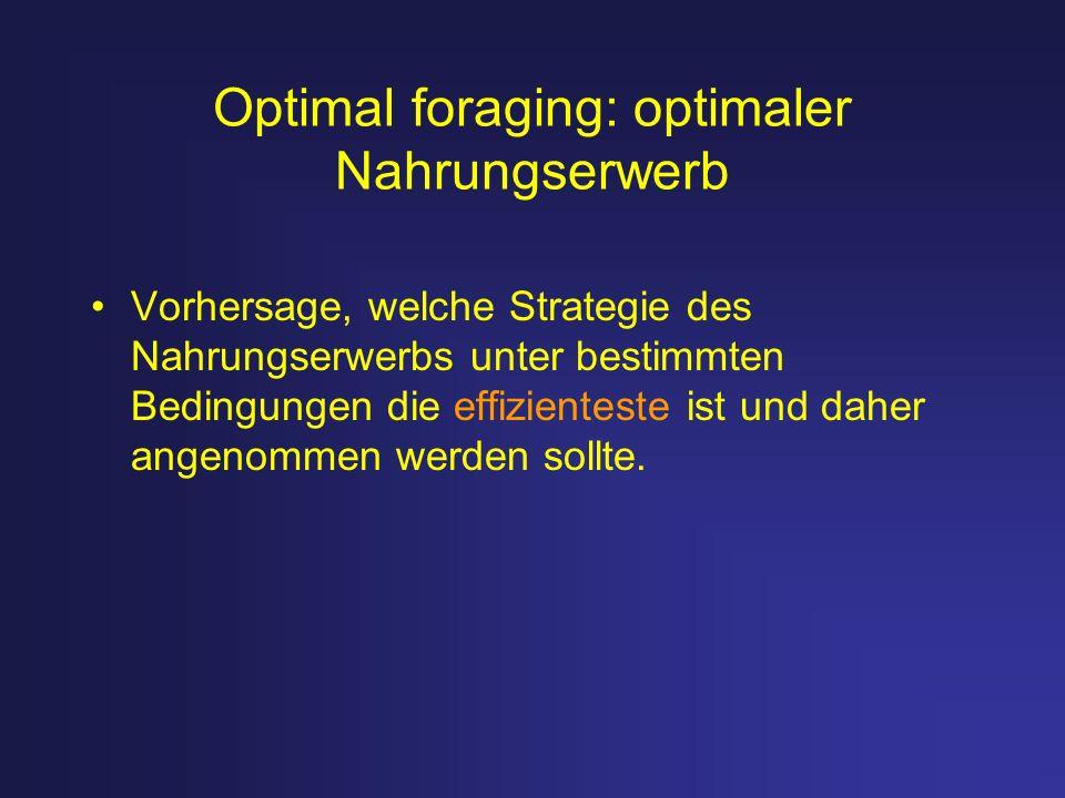 Optimal foraging: optimaler Nahrungserwerb Vorhersage, welche Strategie des Nahrungserwerbs unter bestimmten Bedingungen die effizienteste ist und dah