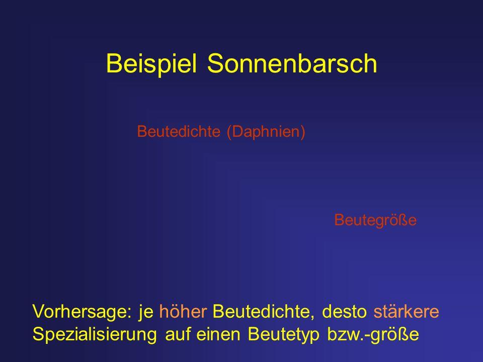 Beispiel Sonnenbarsch Beutedichte (Daphnien) Beutegröße Vorhersage: je höher Beutedichte, desto stärkere Spezialisierung auf einen Beutetyp bzw.-größe