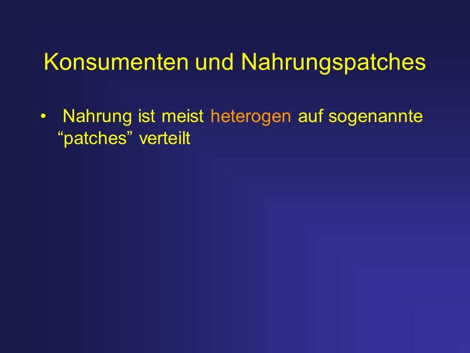 Konsumenten und Nahrungspatches Nahrung ist meist heterogen auf sogenannte patches verteilt