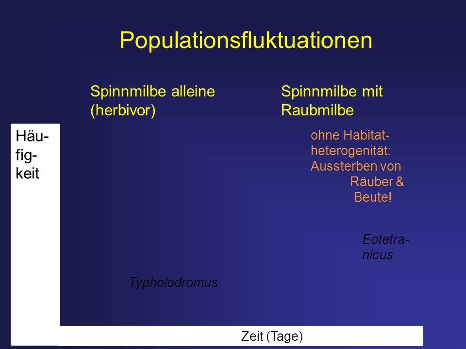 Populationsfluktuationen Spinnmilbe alleine Spinnmilbe mit (herbivor) Raubmilbe Zeit (Tage) Typholodromus Eotetra- nicus Häu- fig- keit ohne Habitat-