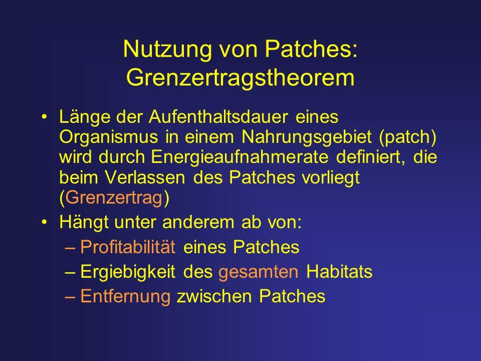 Nutzung von Patches: Grenzertragstheorem Länge der Aufenthaltsdauer eines Organismus in einem Nahrungsgebiet (patch) wird durch Energieaufnahmerate de