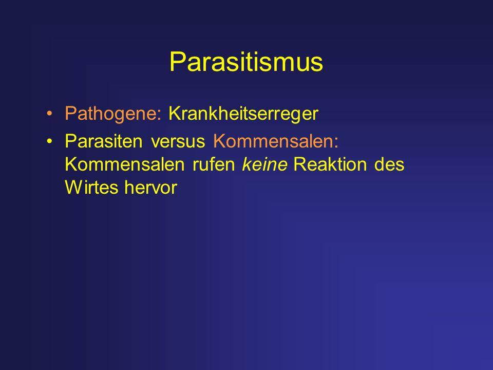 Parasitismus Pathogene: Krankheitserreger Parasiten versus Kommensalen: Kommensalen rufen keine Reaktion des Wirtes hervor
