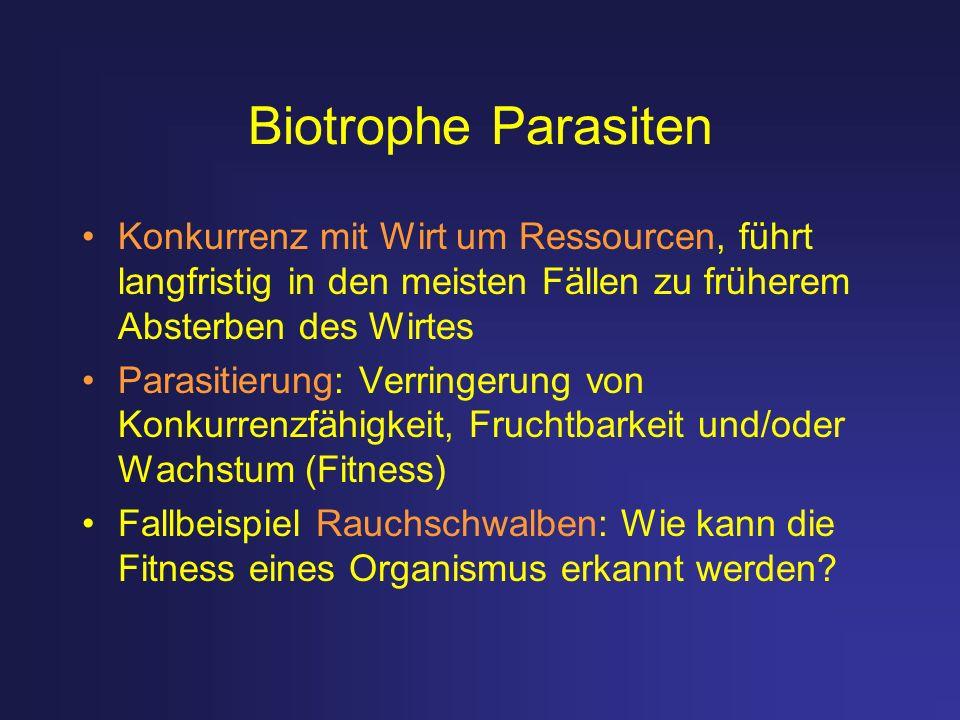 Biotrophe Parasiten Konkurrenz mit Wirt um Ressourcen, führt langfristig in den meisten Fällen zu früherem Absterben des Wirtes Parasitierung: Verring